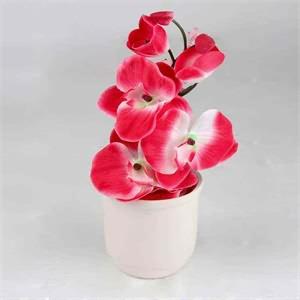 Yapay Orkide Saksılı