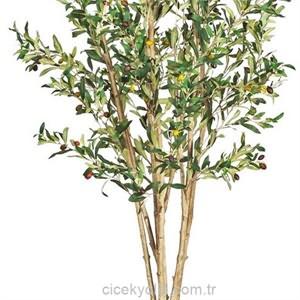 Saksı İçerisinde Yapay Zeytin Ağacı