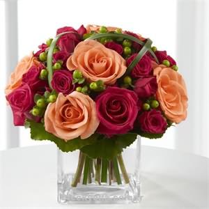 Aşk Meleği Çiçeği
