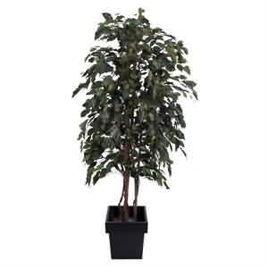 Yapma Benjamin Ağacı