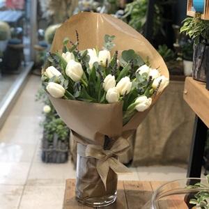Beyaz Lale Çiçeği