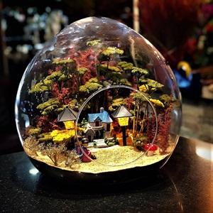 Glass  Butik Terraium