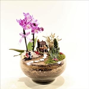 Orkide Bahçesi Teraryum