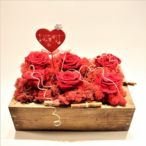 Kırmızının Tutkusu Stabilize Güller