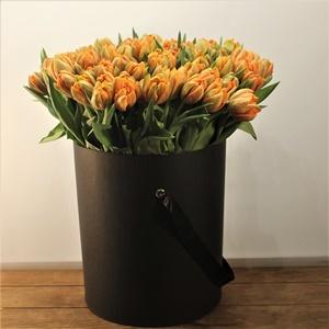 Lale Çiçekleri