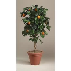 Yapay Mandalina Ağacı