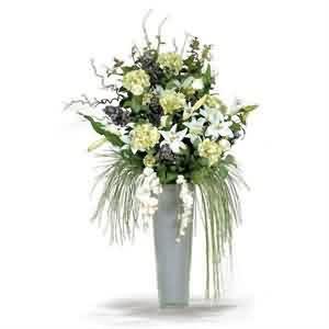 Kaliteli Salon Çiçekleri