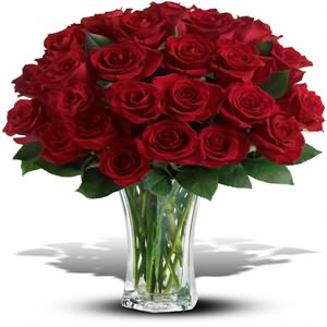 Kadınlar Günü Çiçek Siparişi