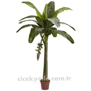 Yapay Tropik Ağac