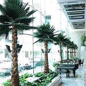 Şoklanmış  Palmiye Ağacı