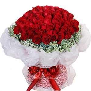 Sevgili Aşkıma 101 Kırmızı Gül