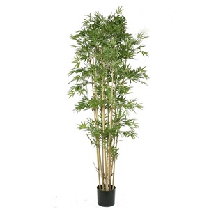 Yapma Bambu