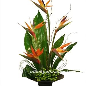 Starliçe Çiçeği Siparişi