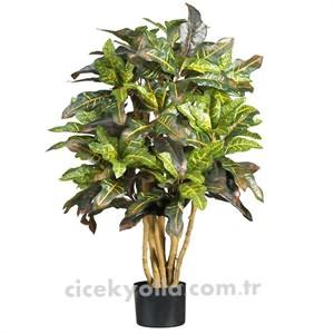 Yapay Kraton Ağacı Siparişi
