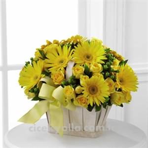 Sarı Cerbera Çiçeği
