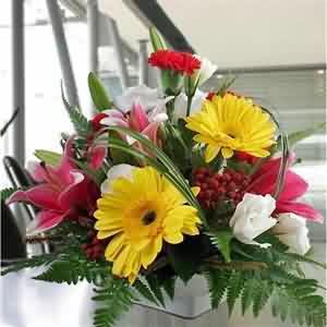 Organizasyon Masa Çiçeği