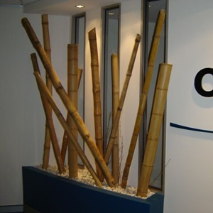 Dal Bambu Dekarasyonu