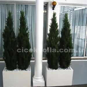 4 lü Yapay Mazı Ağacı