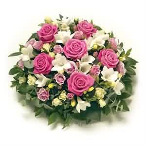 Renkli masa Çiçeği