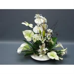 Yapay Nikah Masası Çiçeği