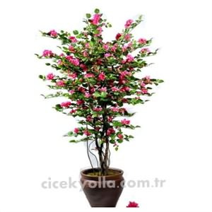 Yapay Begonvil Ağacı Siparişi