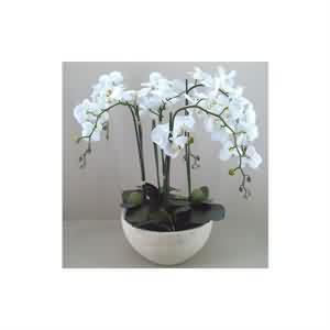 Yapay Orkide Çiçeği gönderimi