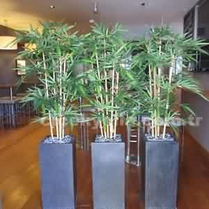 Bambu Uygulamaları