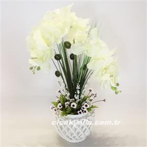 Kilis`e yapay orkide