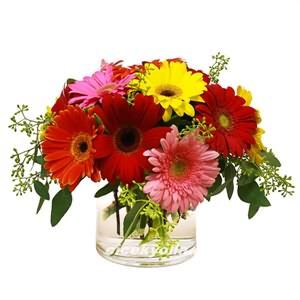 Amasya Online Çiçek Gönder