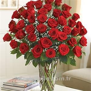 Premium Uzun Sap  Kırmızı Güller
