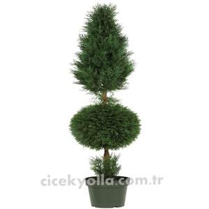 Yapay Mazı Ağacı