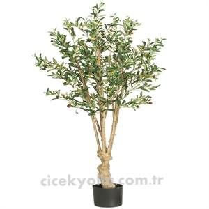 Yapay Zeytin Ağacı Siparişi