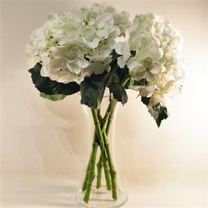 Cam Vazo Beyaz Ortanca Yapay Çiçek Aranjmanı