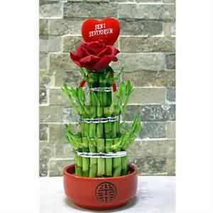 Bambu Çiçekçi