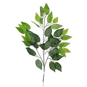 Yapay Dal Benjamin Ağacı