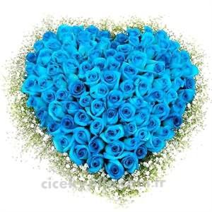 Mavi Gül Sipariş