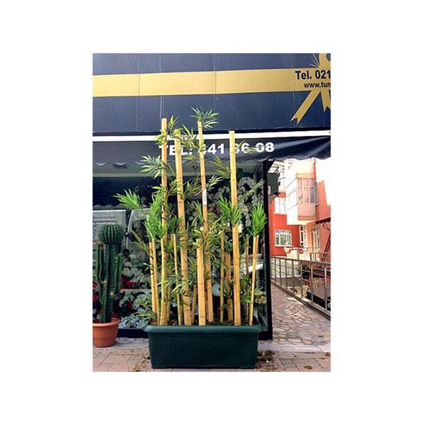 Bambu Uygulaması