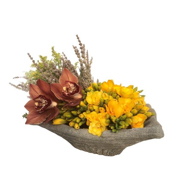 Neli Sarı Frezya Orkide Serisi
