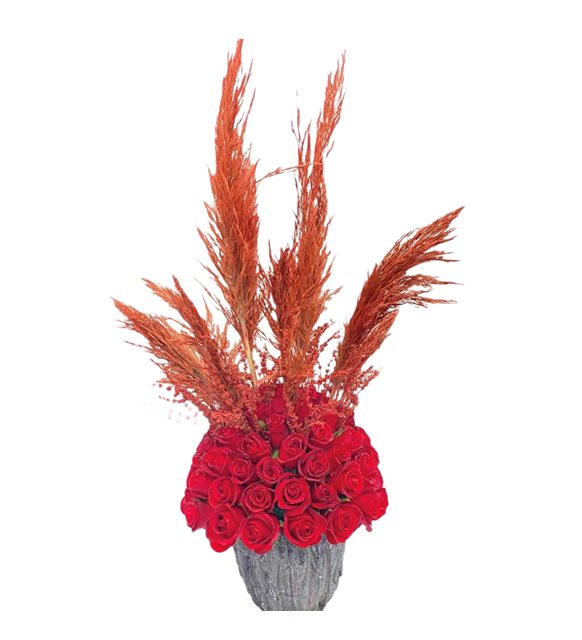 Pampas Kırmızı Gül Topu