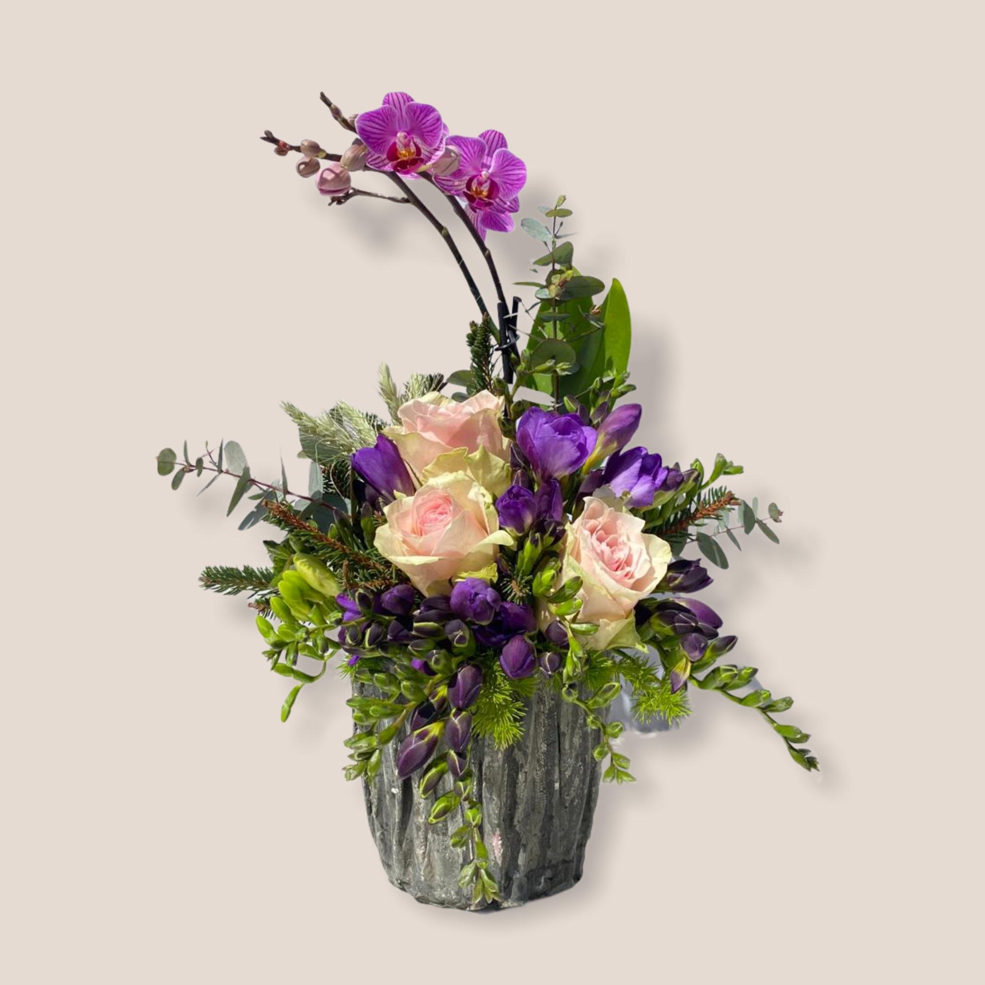 Pembe Güllü Mini Orkide Serisi