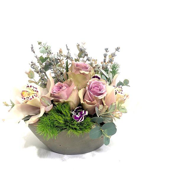 Ancelica Orkide Lila Gül Serisi