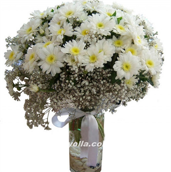 Yozgat çiçek