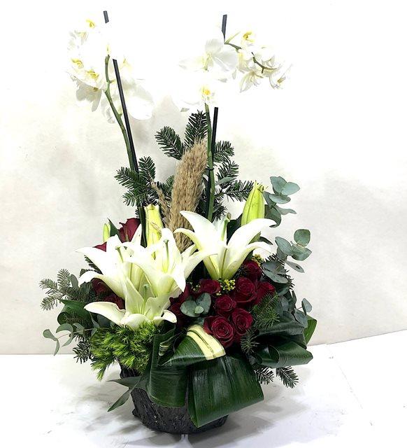 Maryland 2li Beyaz Orkide Gül Serisi
