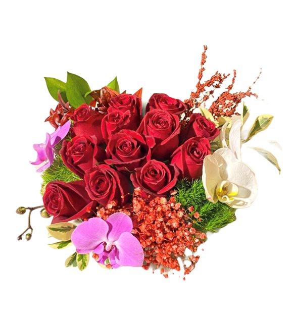 Akanay Kırmızı Gül Orkide Serisi