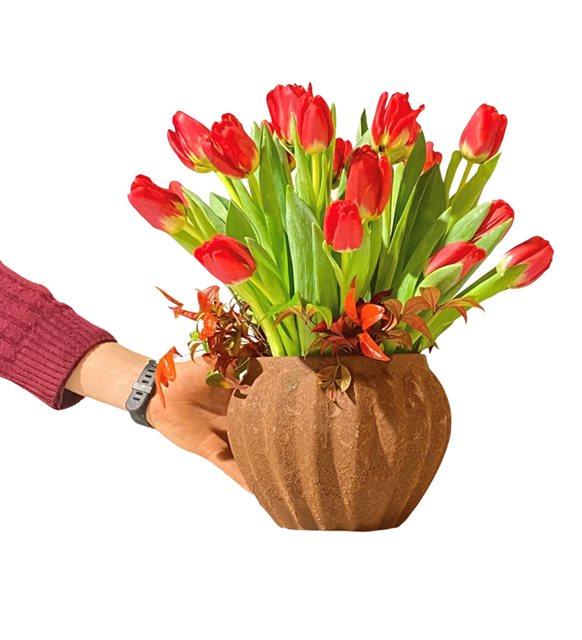 Kastomari Kırmızı Tulipa Serisi