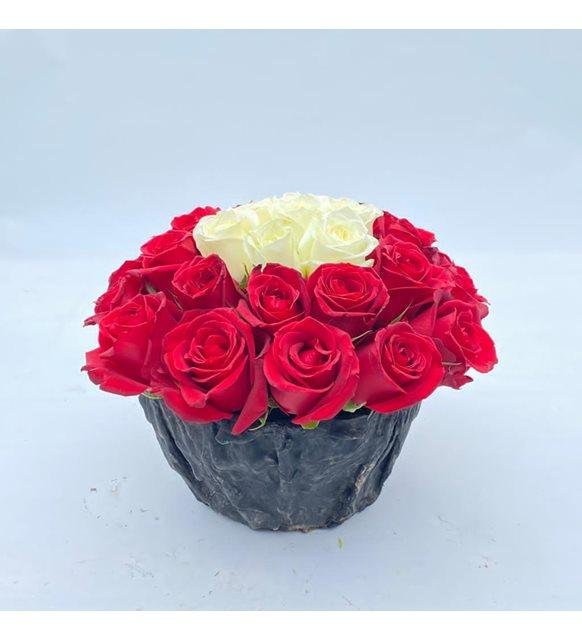 Kırmızı Beyaz Aşk