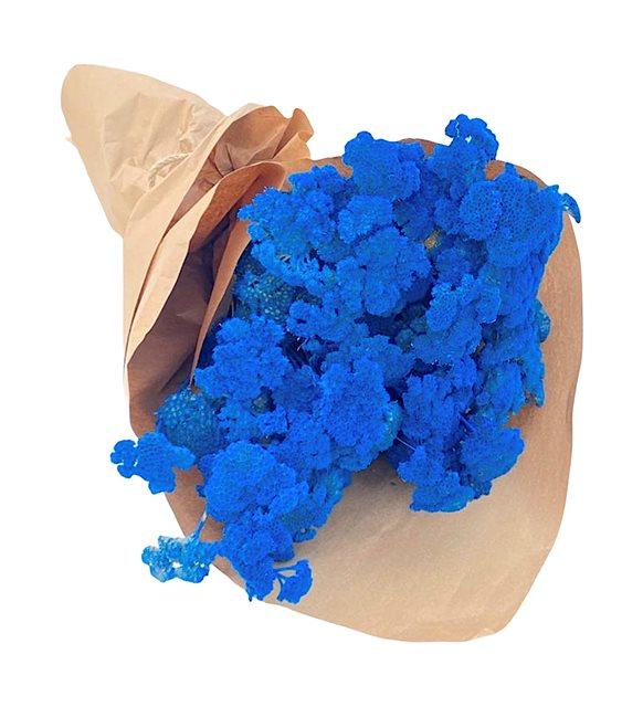 Mavi Stabil Kurutulmuş Buket