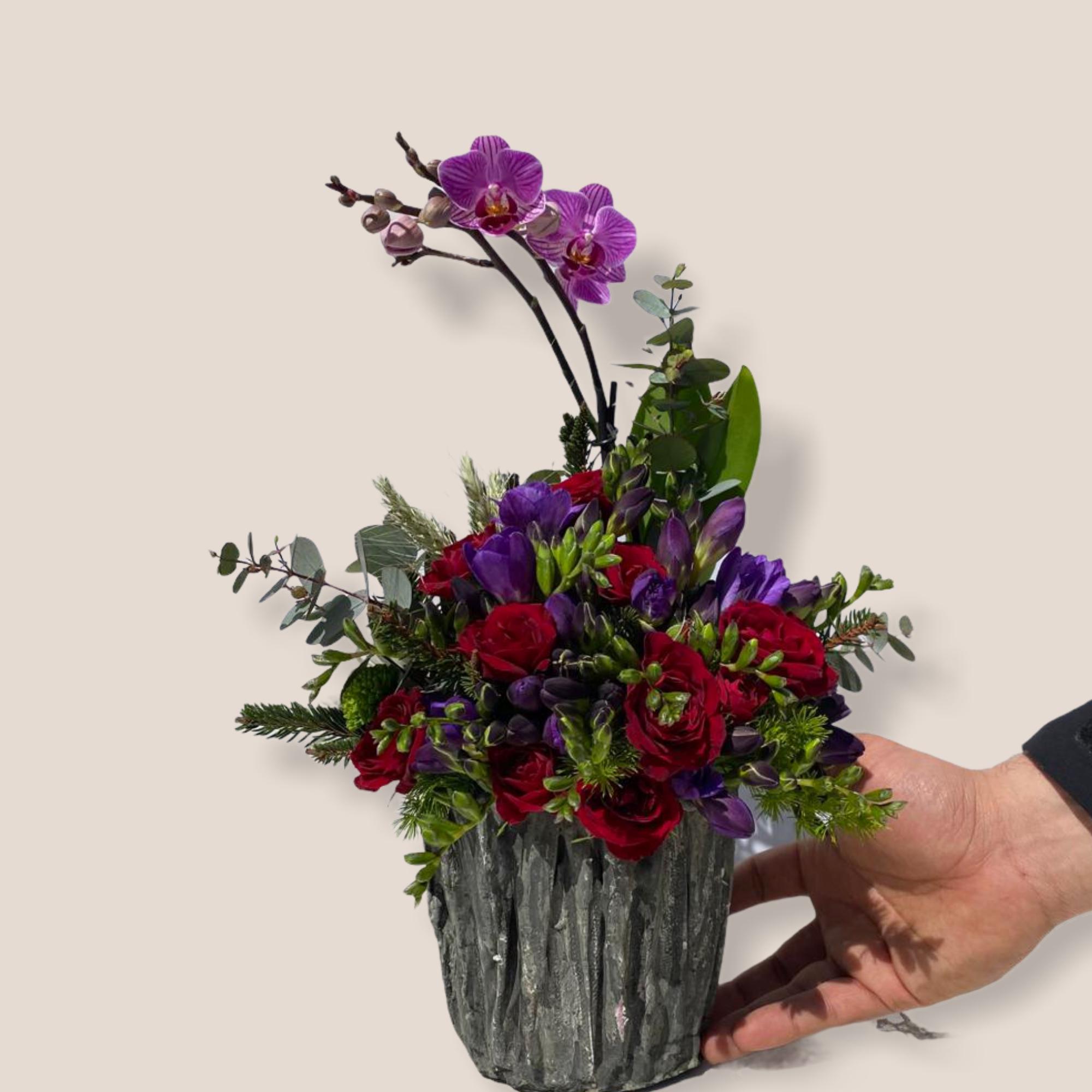 Saksıda mini orkide ve güller